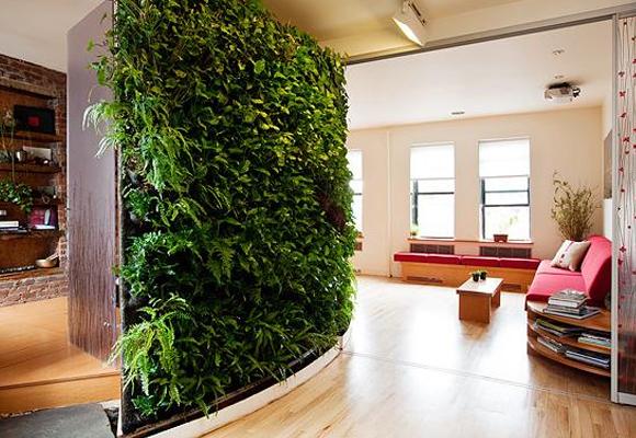 14_plantas_ideais_para_instalar_em_jardins_verticais