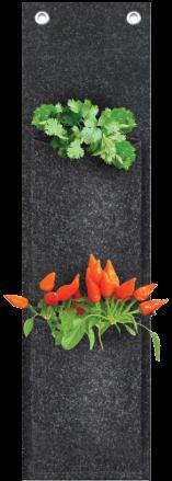 nossa-horta-2-nichos