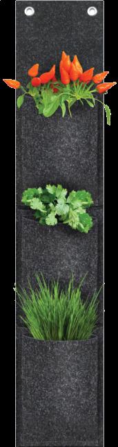 nossa-horta-3-nichos