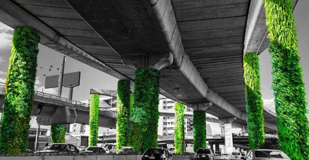 via-verde-mexico-1024x533